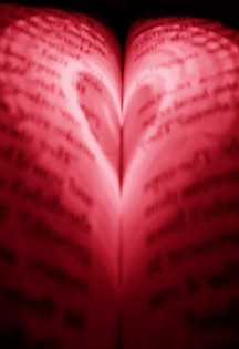 23 love book3 temp5 red 45
